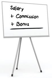 Sales Compensation Consultant